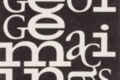 Jurgio Mačiūno kortelė / George Maciunas name card